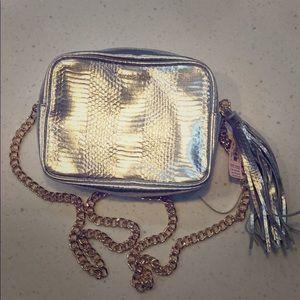 Victoria's Secret silver iridescent purse NWT